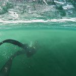 Ice Freediving - Potápění na nádech pod ledem
