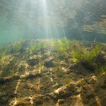 Freediving Barbora