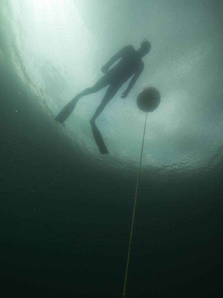 Freediving Horka