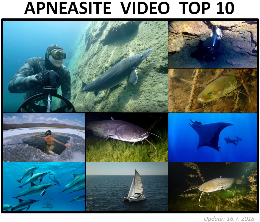 top 10 freediving video