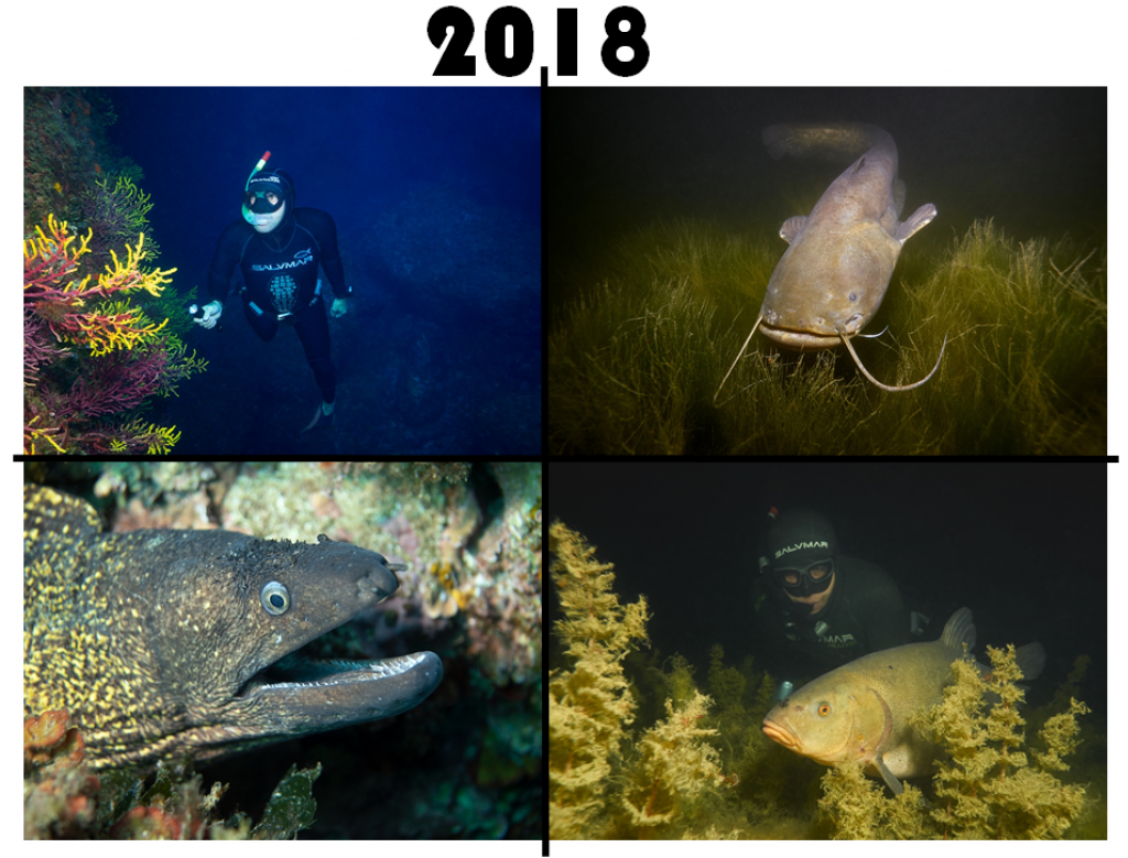 UW FOTO MOMENTS 2018 Freediving