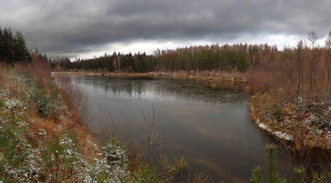 Liščí rybník – 26.12. 2020