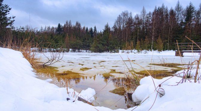 Oborský rybník Labské pískovce